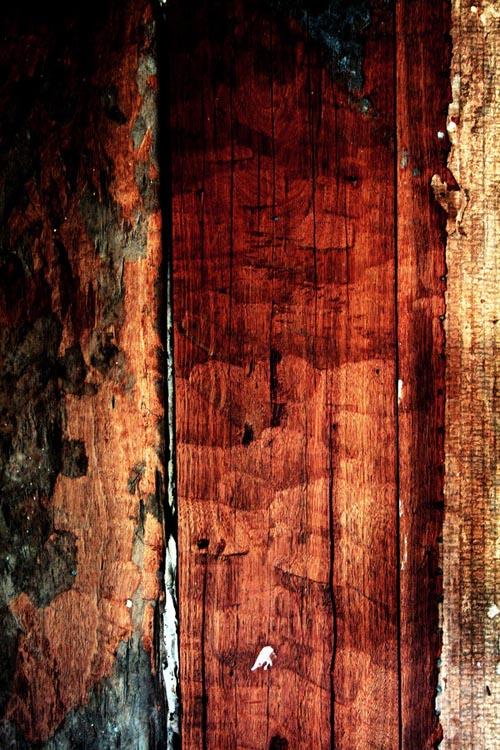 High Qualtity Wood Textures-35
