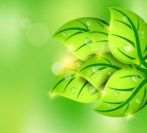 Green Leaf Spring Vector Background Vector Graphics