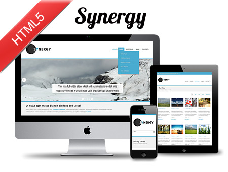 Synergy Responsive Web Template