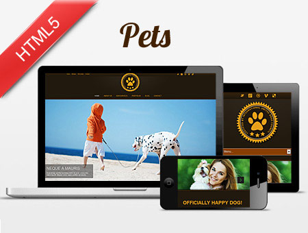Responsive Template for Pets Website