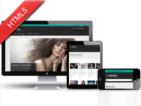 Euphoria Multipurpose Responsive Template with Gallery