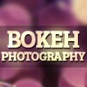 Post thumbnail of Bokeh Photography – 35 Beautiful Photos