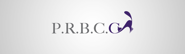 Best Business Logo Design-11