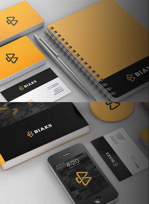 BIAKS Branding letterhead