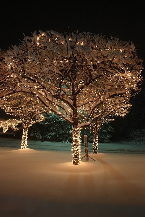 Twinkle Lights Photography-15