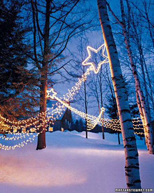 Twinkle Lights Photography-21