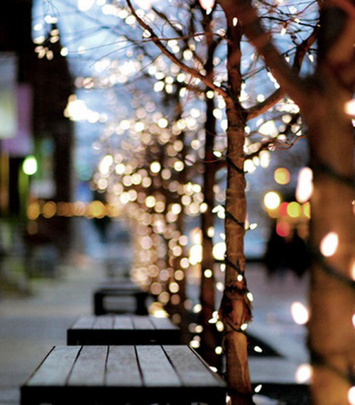 Twinkle Lights Photography-24