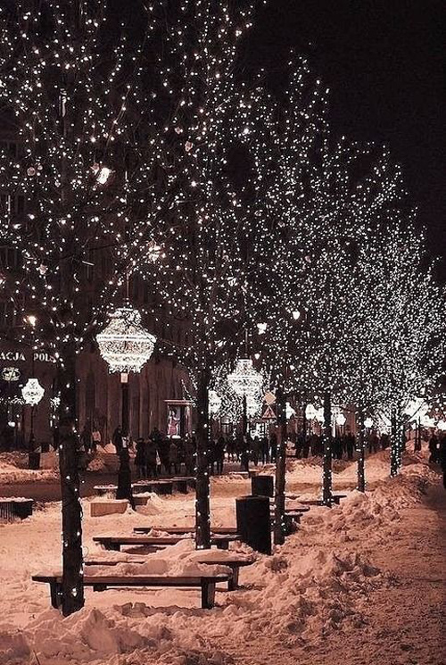 Twinkle Lights Photography-29