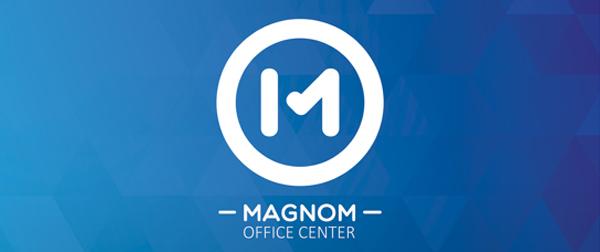 Magnom - Logo Guidelines & Branding identity