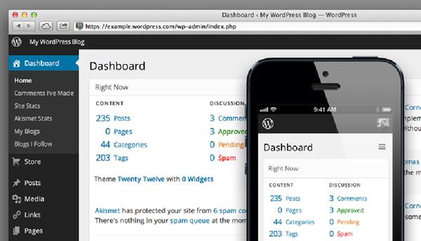 WordPress a Viable Options as a CMS
