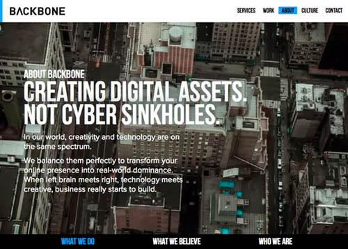 Big Background Websites - 6