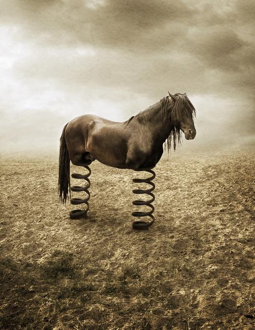 Conceptual Photography - 8