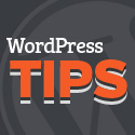 Post Thumbnail of 3 WordPress Tips to Save Time and Boost Productivity