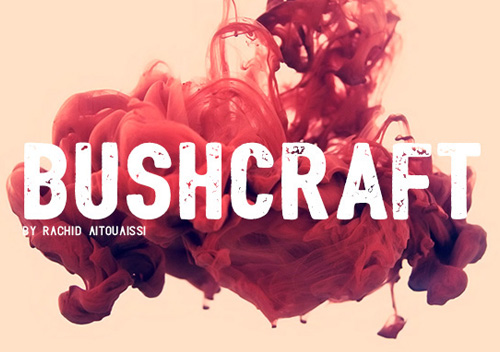 Bushcraft free font