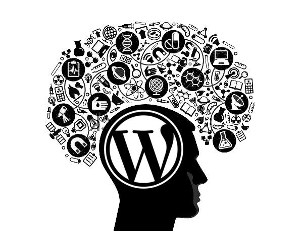 WordPress Web Application APIs