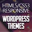 Post Thumbnail of Modern Responsive WordPress HTML5/CSS3 Themes