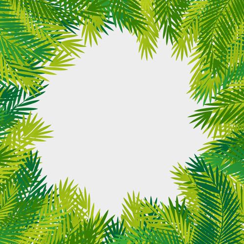 Tropical Leaves Vector Frame
