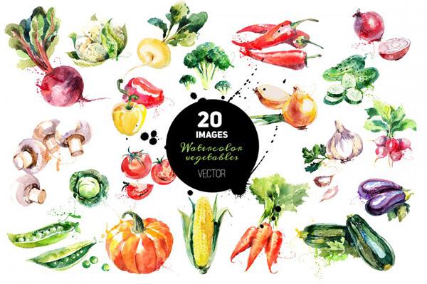 Watercolor Vegetables Vector