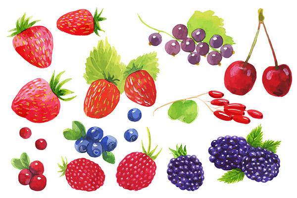 Watercolor berries set