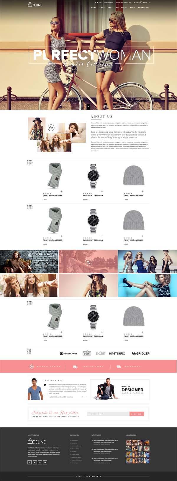 Celine : Responsive Shopping WordPress Theme