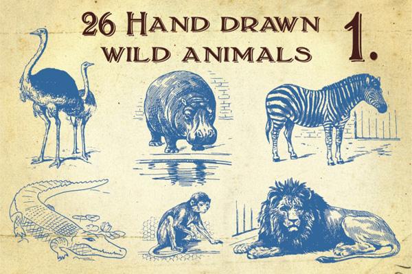 26 Vintage Hand Drawn Wild Animals