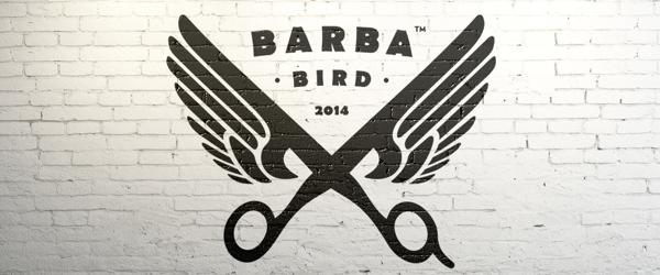 Barba Bird Identity Logo Design