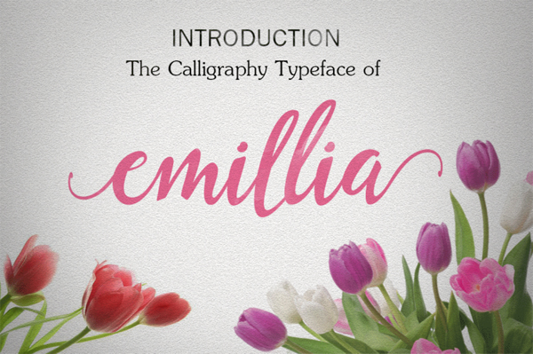 Emillia is a brush script that is beautiful and unique