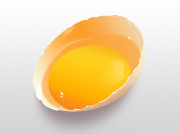 Create a Photo-Realistic Broken Egg from Scratch in Photoshop tutorial
