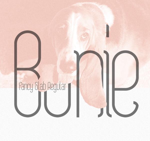 Bonie Free Font