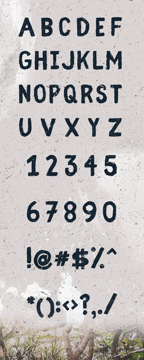 Fibre (Vintage) fonts and letters