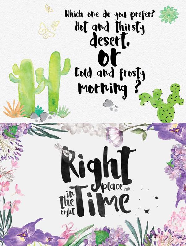 La Viola fonts and letters