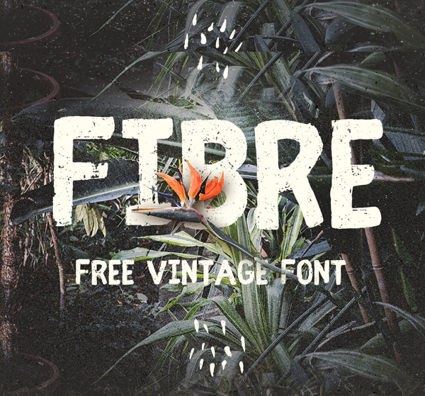 Best Free Script Fonts for Logo Design & Logotypes (20 Fonts) - 4