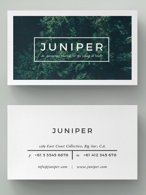 Beautiful Multipurpose Business Card Template