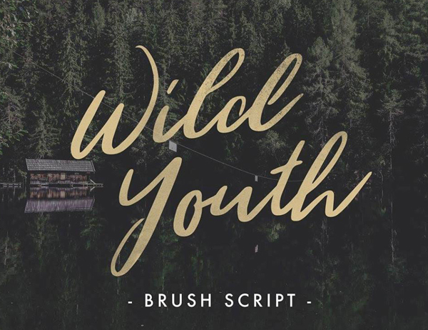 50 Best Free Fonts For 2017 - 23
