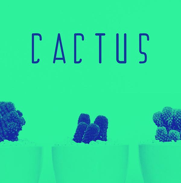 Cactus Free Font