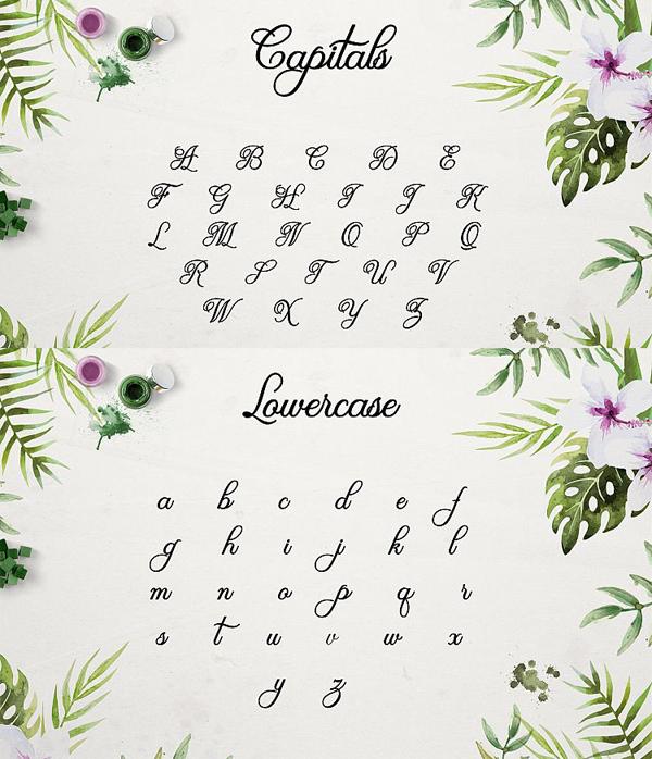Olivia Script Free Font Letters