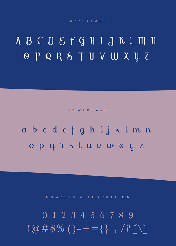 Prink Script Font Letters
