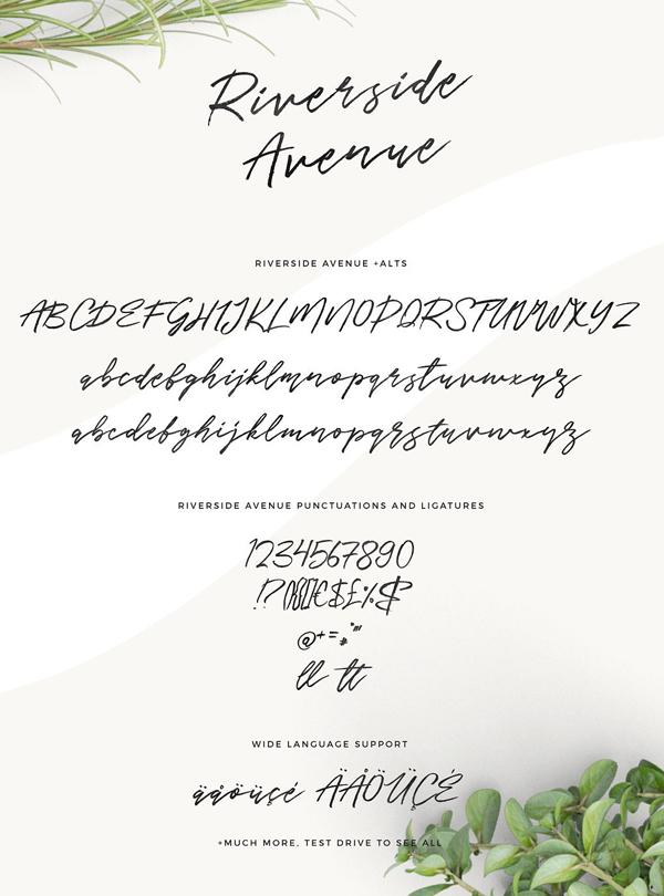 Riverside Avenue (hand brushed) Font Free Download