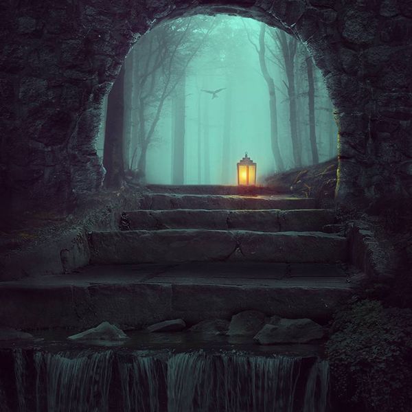 How to Create a Dreamy Forest Photo Manipulation With Adobe Photoshop