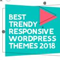 Post thumbnail of 21 Best Trendy Responsive WordPress Themes