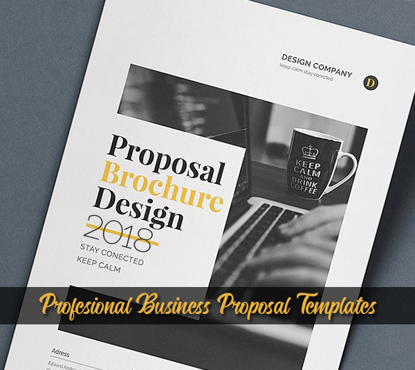 18 Professional Business Proposal Brochure Templates