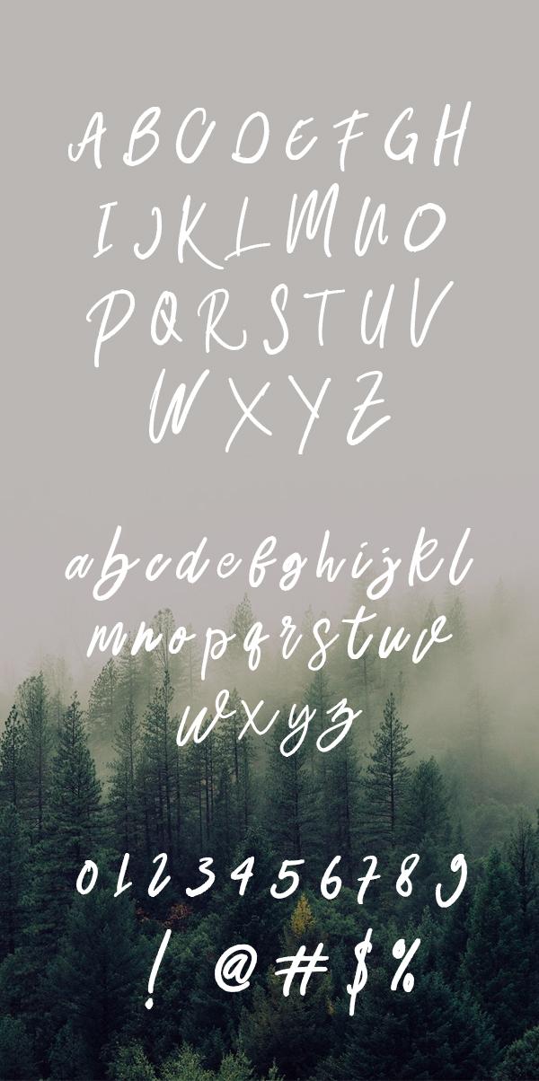 Belley Script Brush Font Letters