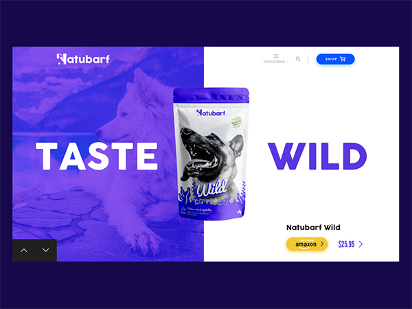 50 Modern Web UI Design Concepts with Amazing UX - 48