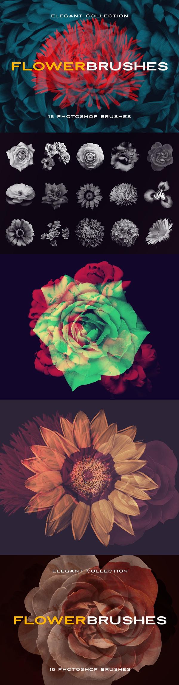Elegant Flower Brushes for Photoshop