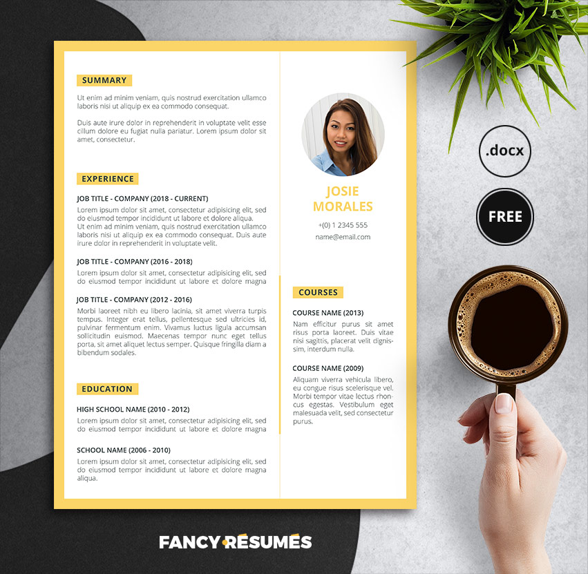 Fancy Resume Templates from graphicdesignjunction.com
