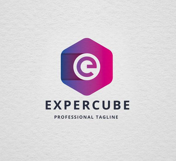 Expertize Cube E Letter Logo Design
