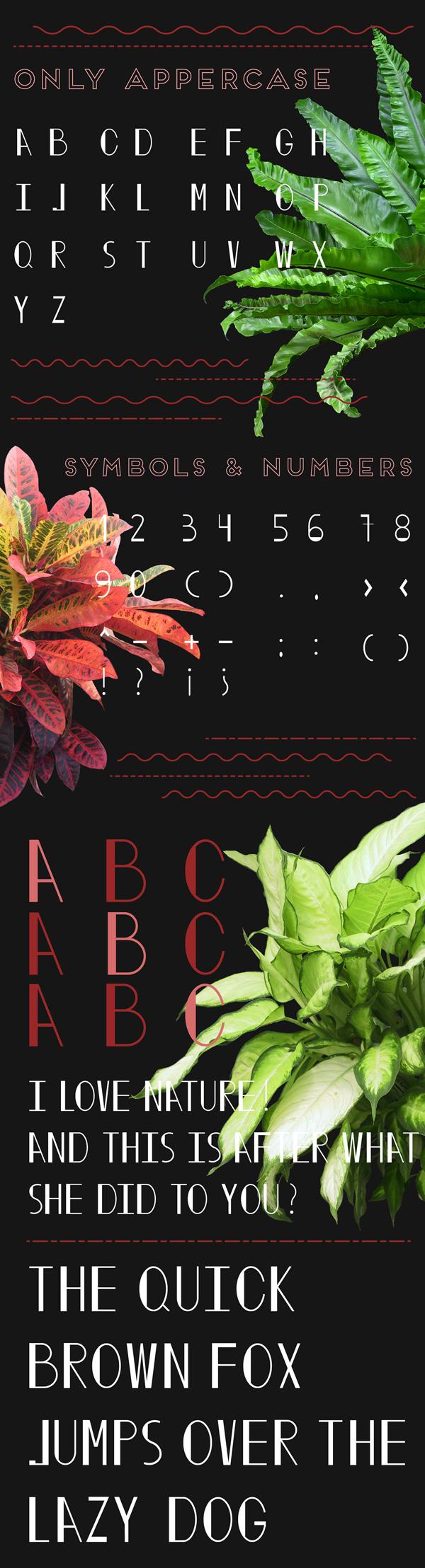 Soradolphia Free Font Letters