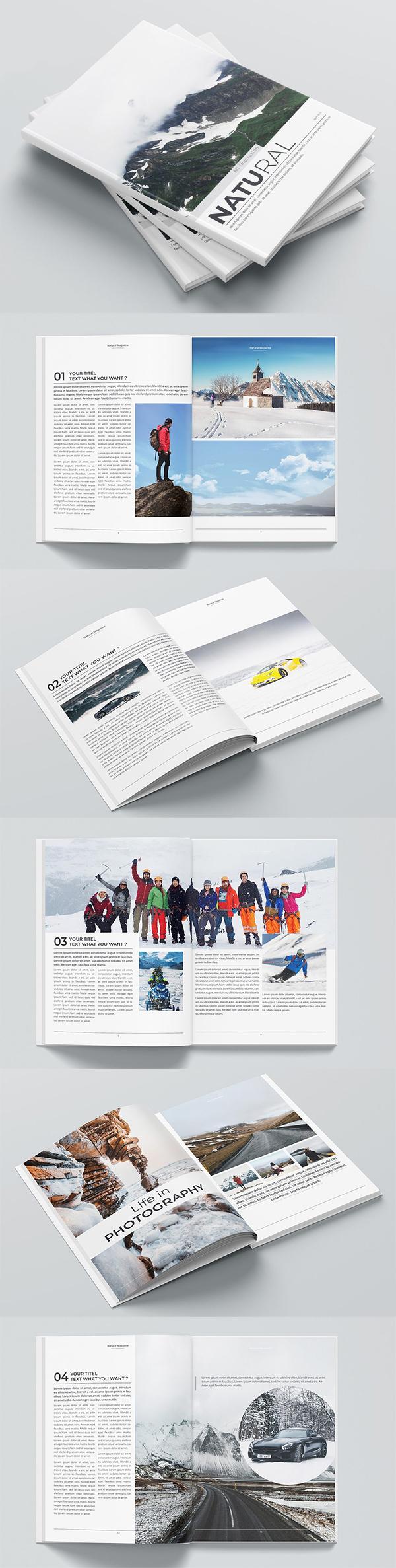The Magazine Brochure Design