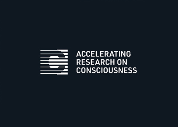 ARC Identity Logo Design