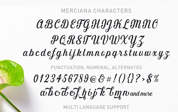 Merciana Script Free Font Letters